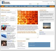 Sharepoint Website Examples Intranet Examples