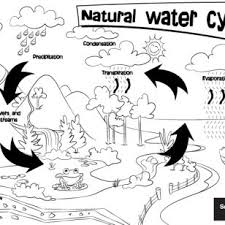Small Picture Images Of Water Cycle Coloring Pages Education downloadwater