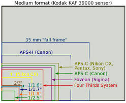 Aps Sensor Size Chart The 1 Camera What Is Nikon Thinking Updated