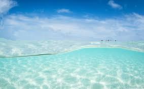 Image Beach Wide Wallpapers Wide Clear Ocean Water 4k Hd Desktop Wallpaper For 4k Ultra Hd Tv