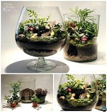 diy plant terrarium mini fairy terrarium garden ideas and projects landscaping cape town professional landscaping services