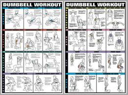 Bowflex Exercise Wall Chart Details About Dumbbell Workout Dumbells Free Weights Pro Fitness Wall Charts 2 Poster Set