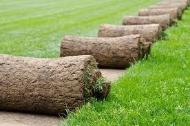 How to lay a new lawn from turf