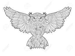 フクロウ鳥大人ベクトル イラストの塗り絵大人のための着色抗ストレス 黒と白のラインレース パターン