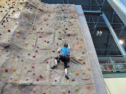 recent posts on artificial rock climbing wall cost with a helpful a to z on realistic strategies for climbing wall in bunbury