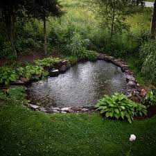 Pond Sweet And Spicy Bacon Wrapped Chicken Tenders Garden Ponds And Water