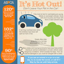Download And Share Our Hot Weather Infographic To Prevent