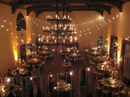 breathtaking party room string lights and fun indoor string lights for modern party room decorating ideas
