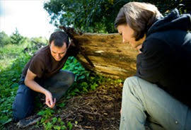Ecology Jobs The Ecology Consultancy