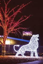 Wild Lights Detroit Zoo Tickets The Detroit Zoo Wild Lights The Indian Scene