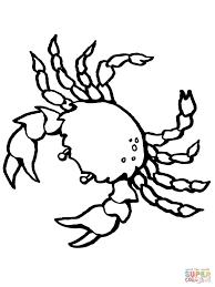 Coloriage Crabe D Capode Cinq Paires De Pattes Coloriages