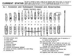 Veterinary Dental Charting Symbols Www Bedowntowndaytona Com