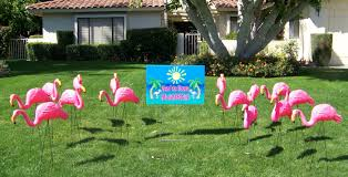 garden flamingos. Flock Of Flamingos With You\u0027ve Been Flocked Sign Garden