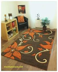 area rugs tampa rug cleaners fl cleaning for sale t20 tampa