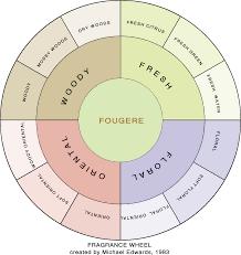 Essential Oil Scent Wheel Google Search Perfume Oils