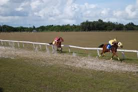 s horseracingbelize perfect gift of the canton les powered home