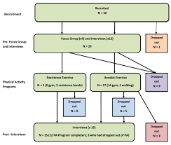 Flow Chart Of Participants Progression Through The Study
