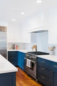 Blue And White Kitchen Cabinets in Blue Kitchen Cabinets Magnificent ...