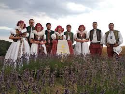 Image result for levandulový festival 2021