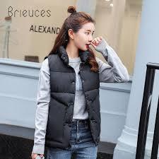 2019 <b>Brieuces</b> 2018 Autumn <b>Women'S</b> Vest <b>Winter Warm</b> Stand ...