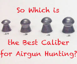 Airgun Fpe Chart Which Is The Best Caliber For Airgun Hunting