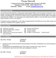 Bartender Resume Example Cool Bartender CV Example In CV Examples Page 28 Of 28