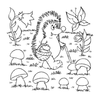 Small Picture Animal Coloring Pages Surfnetkids