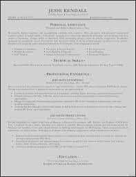 Examples Of Great Resumes New Example Perfect Resume Best Perfect ...