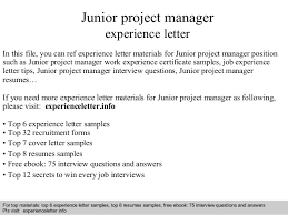 Junior Project Manager Experience Letter
