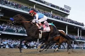 Regardless of the reason, medina spirit would be disqualified from the derby if a second round of. Kentucky Derby Champion Medina Spirit Fails Drug Test Bob Baffert Still Plans To Run Him In Preakness Baltimore Sun