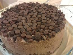 Easy Chocolate Ice Cream Cake Recipe