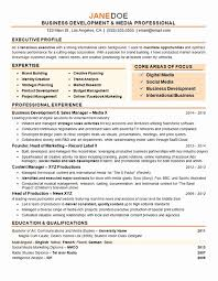 Personal Cio Resume Examples Visit To Reads