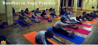 best yoga teacher in rishikesh india rishikesh uttarakhand india