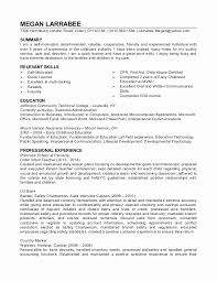 Child Care Resume Awesome Sample Home Daycare Resume New Child Care Resume Sample Mini