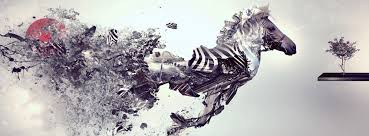 abstract zebra facebook cover
