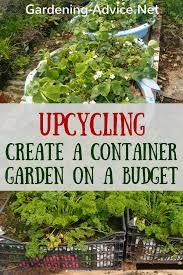 container garden vegetables. Modren Container Container Vegetable Garden Inside Container Garden Vegetables E