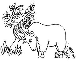 Welcome to our supersite for interactive & printable online coloring pages! Pin On Coloring Pages