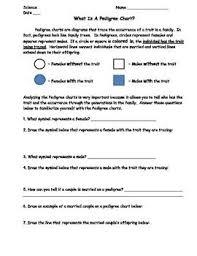 Pedigree Chart Worksheet With Answer Key Pedigree Chart Lesson Bundle Worksheet Exit Slip And
