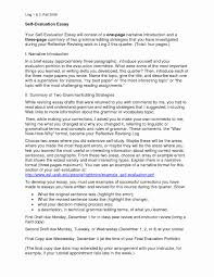 Essay Examples Introduce Myself Example Introduction Sample
