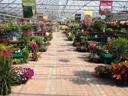 view of the garden center at colonial classics in newburgh in