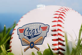 minor league baseball is the best summer sport gear patrol minor league baseball essay gear patrol lead full