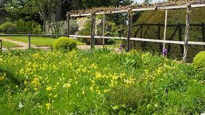 Small Picture Garden Design Garden Design and Landscape Architecture