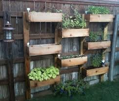 how to grow vertical vegetable garden excellent vertical