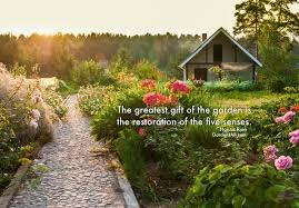 Garden Quotes New Garden Memes Quotes And Sayings For Life Growth And Inspiration
