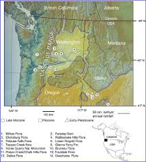 Digital Elevation Map Of Pacific Northwest Showing Fossil