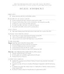 Sample Resume For College Student Classy Sample Resume For College Application Resume For College Application