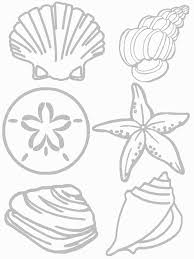 Small Picture Shells Coloring Page Seashore Collage Craft Preschool