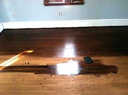 wood floor stain. How To Remove Black Stains From Hardwood Floors Wood Floor Stain Remover Get . R