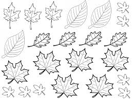 Exceptional Dessin Feuilles D Arbres Education Pinterest