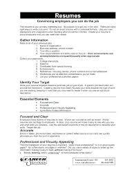 Free Resume Online Builder Resume Letter Collection